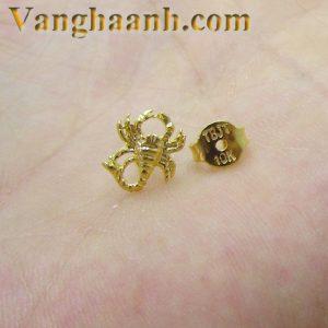Khuyên nam vàng tây bọ cạp-2
